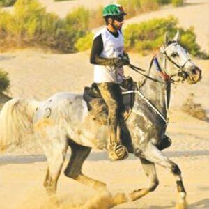 Dubaji sejké lett a magyar ló