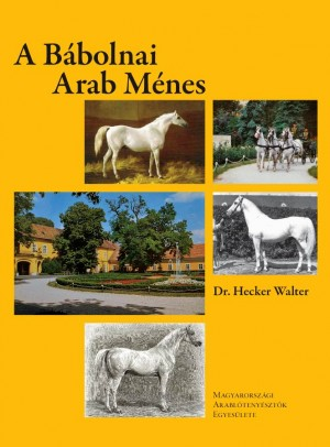 Dr. Hecker Walter: A Bábolnai Arab Ménes