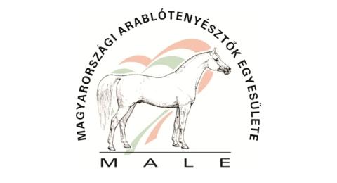 Ménvizsga ara lovak számára